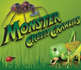 Monster Creepy Crawlies